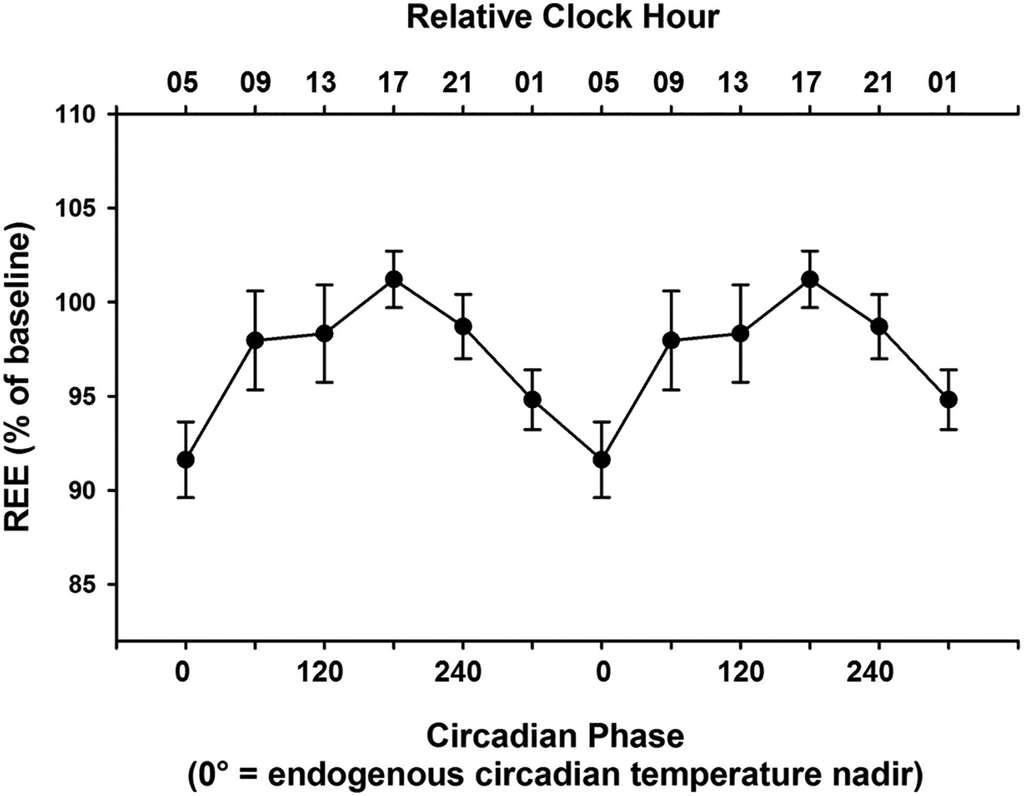 Le métabolisme de base au repos (REE), qui correspond aux dépenses de l'organisme pour assurer les fonctions vitales, est 10 % plus élevé au pic du cycle (vers 17 h), au point noté 180°, qu'à la fin de la nuit (point noté 0°). © Kirsi-Marja Zitting et al., Current Biology, 2018