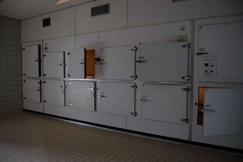 La morgue permet de conserver les cadavres, en attendant l'autopsie. © P.J.L Laurens, Wikimedia, CC by-sa 3.0