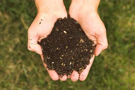 Comment faire du compost ? © Kessner, Wikipédia
