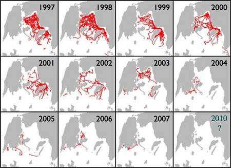 Populations de dauphins communs dans la région des îles Kalamos (mer ionienne) entre 1997 et 2007. Source : Cétacé Alliance