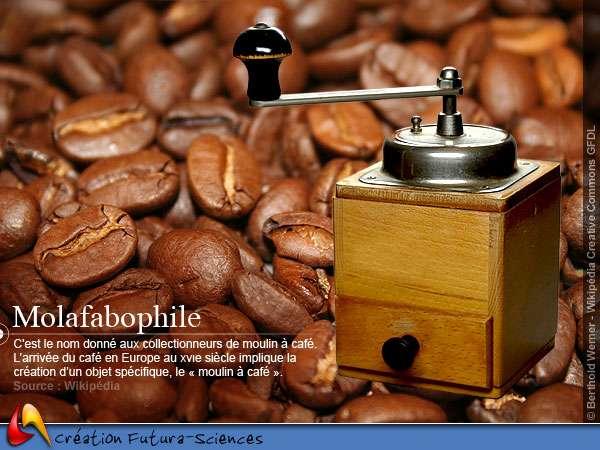 Molafabophile - moulin à café