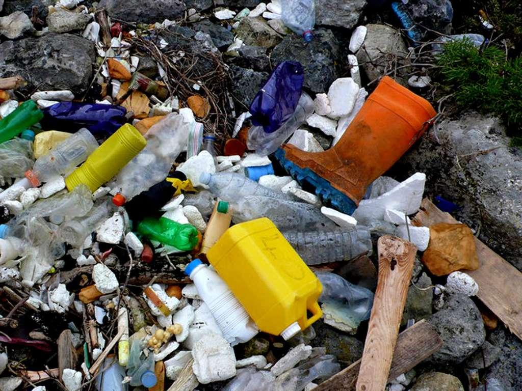 Bouteilles en plastique, en verre, conteneurs : toutes sortes de plastiques sont trouvés sur nos plages. © Nigel Mykura, CC by-nc 2.0