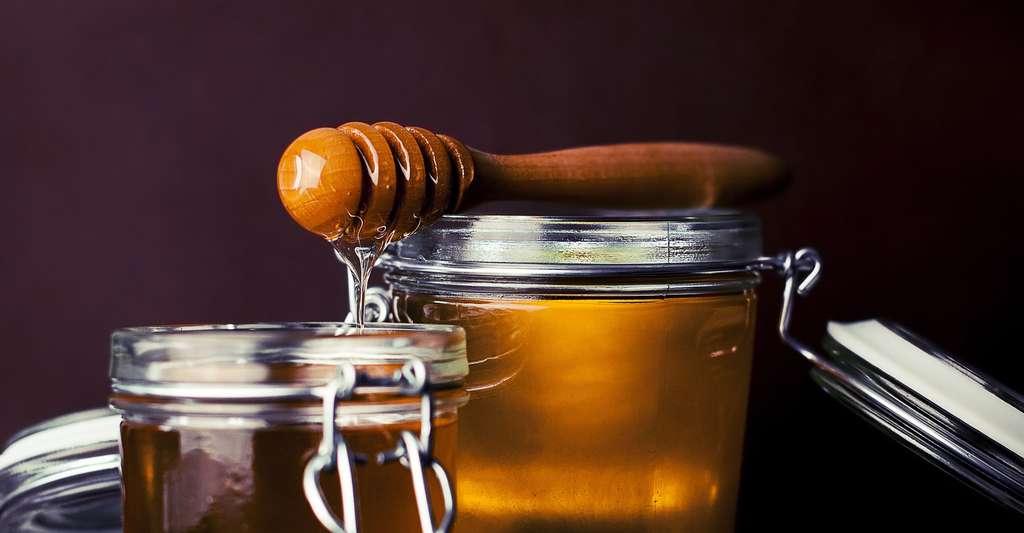 Le miel un produit très raffiné fabriqué par les abeilles. © Fancycrave1 - Domaine public