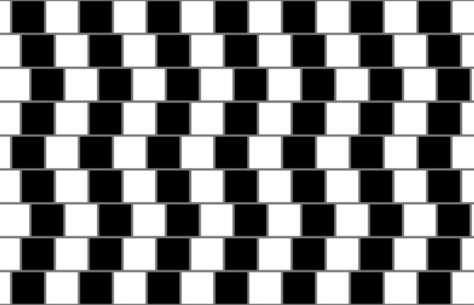 L'illusion du mur de café. © Fibonacci, CC BY-SA 3.0