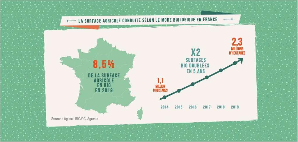 8,5 % des surfaces agricoles françaises sont cultivées en bio. © Agence BIO