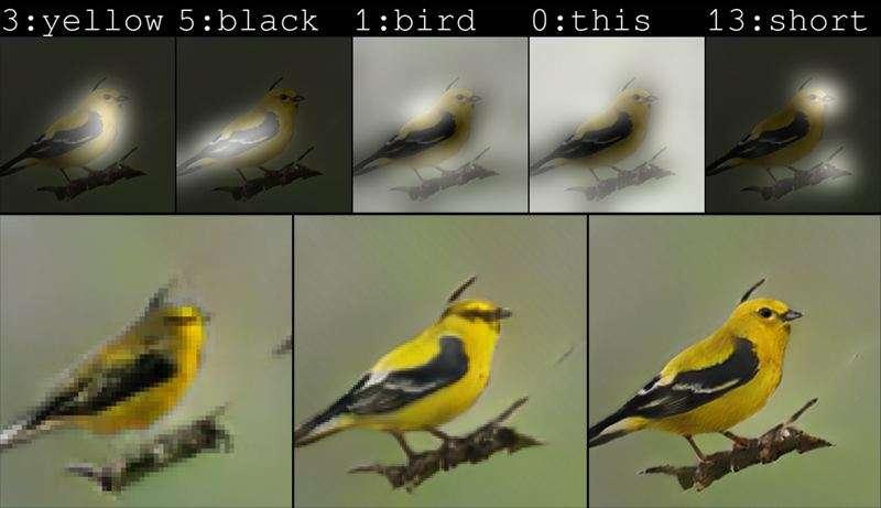 L'IA de Microsoft construit une photo de toutes pièces à partir d'une simple description. © Microsoft