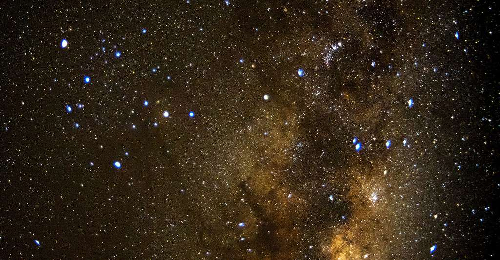 Scorpius. © Cafuego, Wikimedia commons, CC by-sa 2.0