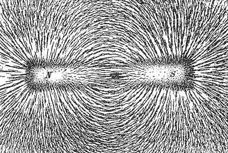 La limaille de fer permet de révéler les lignes du champ magnétique d'un aimant. © Newton Henry Black