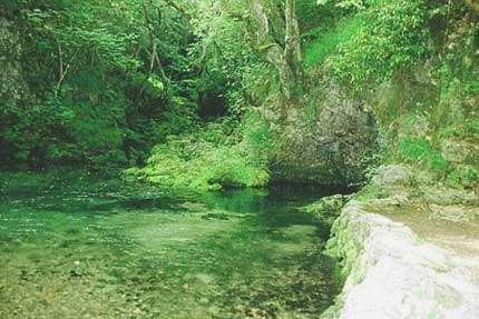 La résurgence de la Venoge, en Suisse, passe par un siphon. © DR