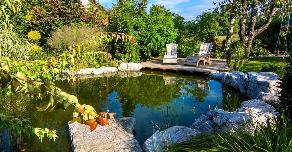 Construire un bassin de jardin | Dossier