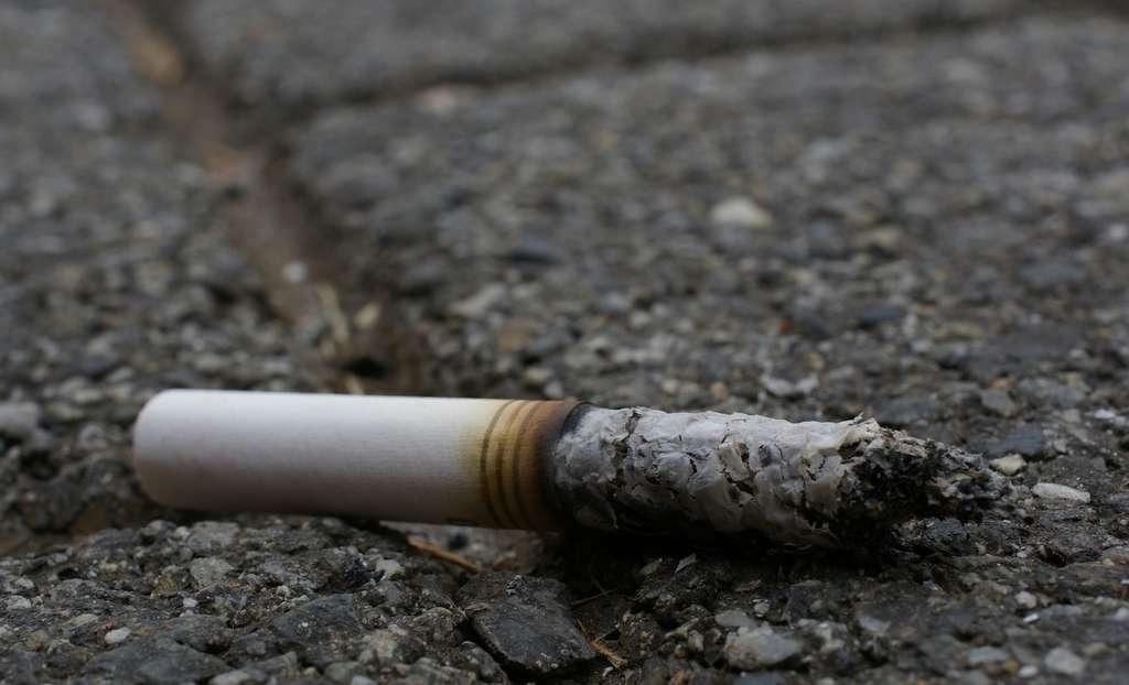 Depuis quelques mois, à Paris, il coûte aux fumeurs pas moins de 68 euros s'ils sont pris à jeter un mégot par terre. © jacme31, Flickr, CC by-sa 2.0