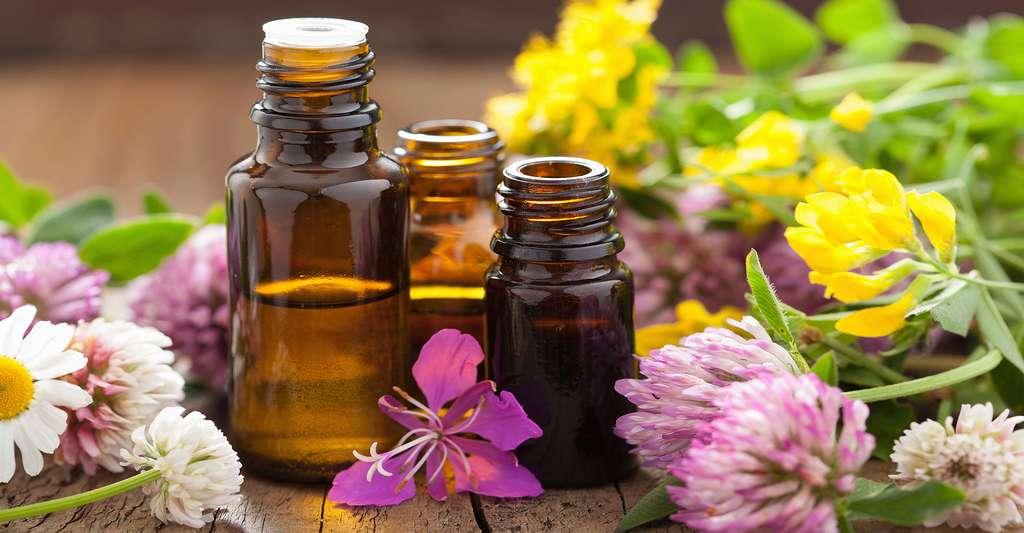Les huiles essentielles peuvent-elles être utilisées comme traitement contre l'acné ? © Olga Miltsova, Shutterstock