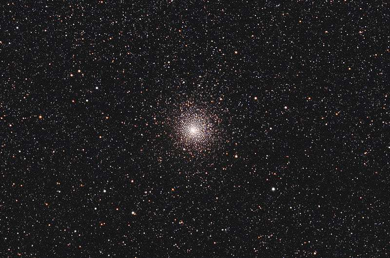 Une vue de l'amas globulaire Messier 62. Large de moins d'une centaine d'années-lumière, M62 se trouve dans la constellation d'Ophiuchus, à environ 22.000 années-lumière du Soleil. On pense maintenant qu'il contiendrait un trou noir stellaire, ce qui viendrait contredire les théories sur l'évolution et la structure des amas globulaires. © Texas Tech University