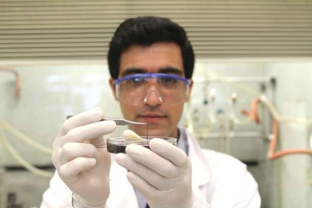 Seyed Mirvakili, l'un des chercheurs ayant participé à la conception de ce supercondensateur, examine un brin composé de nanofils de niobium. © Craig Cheney