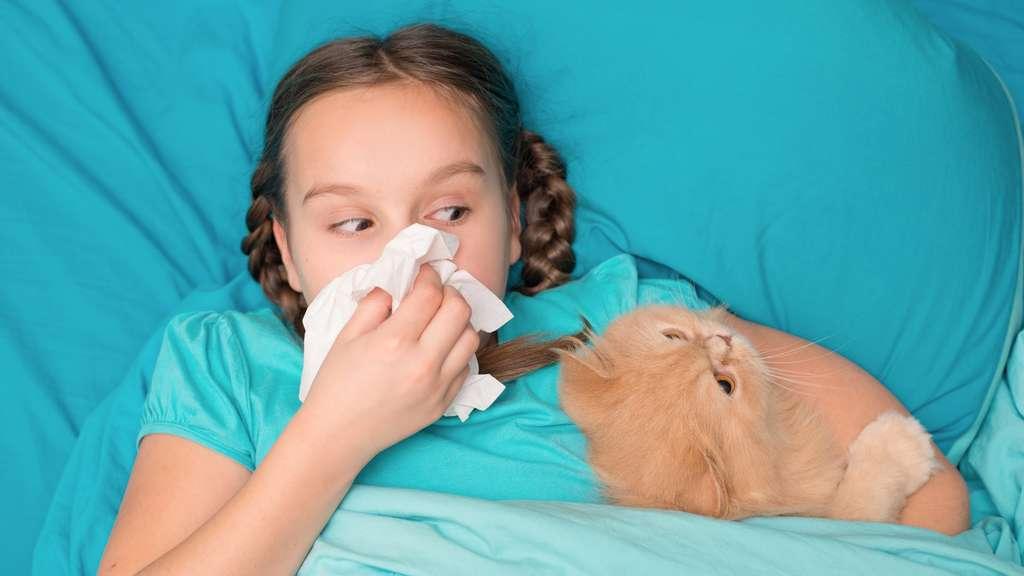 Si vous décidez de dormir avec votre animal de compagnie, veillez à ce que quelques conditions d'hygiène simple soient respectées : vermifugation, absence de puces, etc. © Goncharenya Tanya, Fotolia