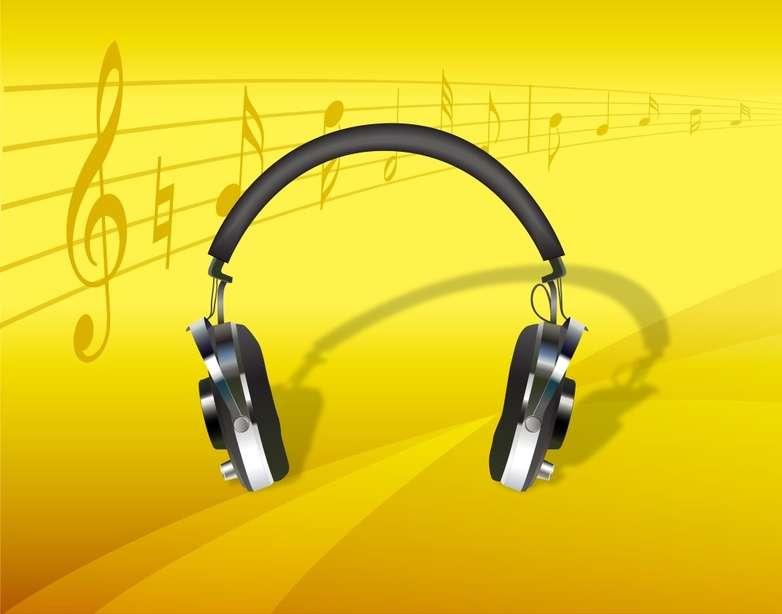 Les expériences sur la musique ont été réalisées avec des singes et avec des humains. © trouveztout.org