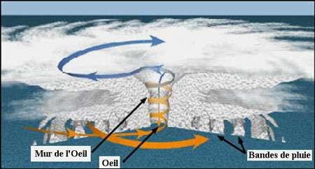 Structure d'un cyclone tropical : bandes de pluie concentriques, l'œil et son mur. Les flèches jaunes et bleues montrent le mouvement de l'air et des nuages. © NOAA Domaine public