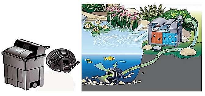 Un kit avec pompe immergeable et filtration extérieure est pratique pour un bassin de petite à moyenne contenance : en dessous de 12 m3. Ici, des mousses synthétiques assurent la filtration mécanique et biologique, que renforce un stérilisateur/clarificateur UVC intégré. Situé en surplomb, le filtre contribue de surcroît à oxygéner l'eau en la rejetant dans le bassin à la façon d'un cracheur d'eau. / Modèle présenté pour bassins empoissonnés de 1.500 litres ou de 7.000 litres avec plantes seules. Dimensions filtre : L. 380 x l. 280 x H. 410 cm. Puissance pompe 40 W. Lampes UVC de 9 W. Entretien aisé. Prix TTC : 239 €. Réf. : Biosmart 7000. © Oase Water Gardens