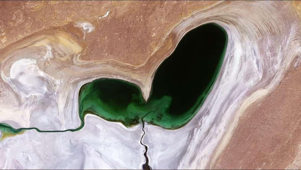 Ce beau cœur vert, vu par Sentinel 2 en 2018, est comme un des derniers organes qui restent du corps desséché de la mer d'Aral, en Asie centrale. Il constitue la pointe nord de la partie occidentale de ce lac d'eau salé, autrefois quatrième plus grand lac du monde. Il ne fait aujourd'hui plus que 10 % de sa taille historique. © ESA