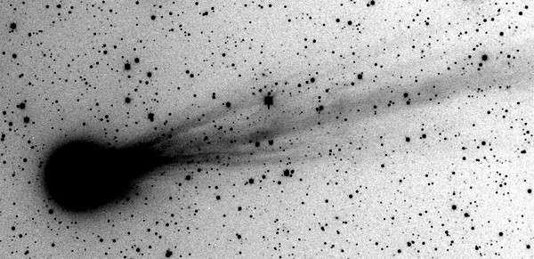 En augmentant fortement le contraste d'une image réalisée le 6 juin par l'astronome M. Mobberly, on observe de nombreux jets de gaz qui s'échappent de la chevelure de la comète C/2009 R1. Crédit M. Mobberly, traitement J.-B. Feldmann