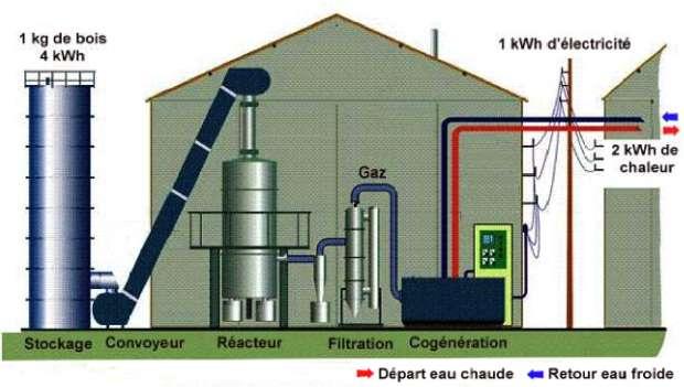 Schéma de principe d'une cogénération au bois. Le gaz sortant du réacteur est refroidi avant d'être débarrassé de ses impuretés puis dirigé vers le groupe de cogénération. Les cendres tombent dans un réceptacle et sont récupérées pour servir d'engrais. © icedd.be