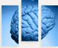 Cliquez pour découvrir les symptômes de l'épilepsie. © epileptogene.ca