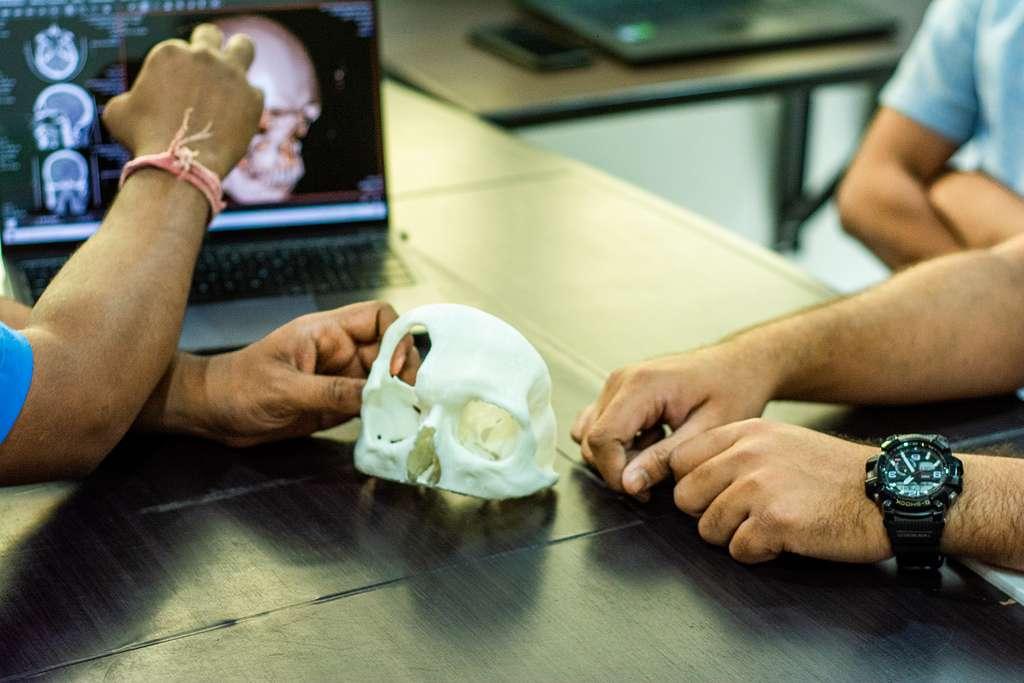 Crâne imprimé en 3D, destiné à faciliter l'action pré-opératoire du chirurgien. © LUCID Implants