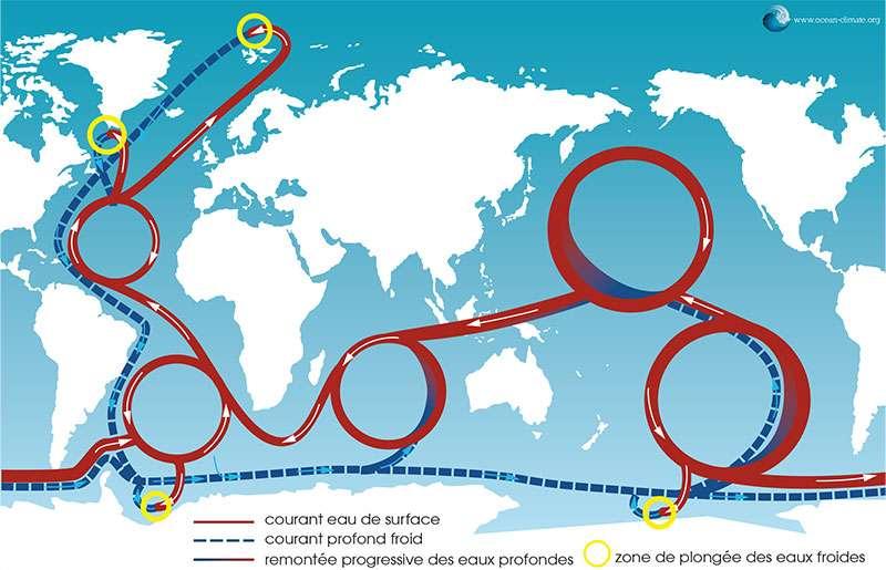 Schéma simplifié de la circulation océanique globale. © Ocean Climate Platform