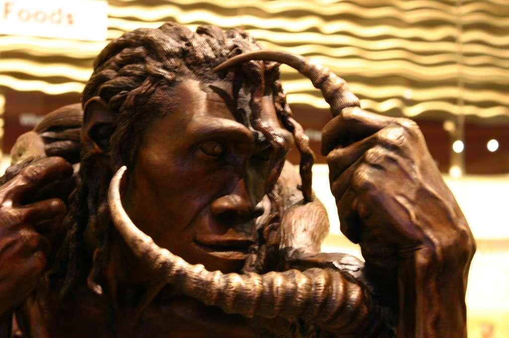Homo erectus, ici représenté au Smithsonian Museum à Washington D.C. (États-Unis) vivait entre -1 million d'années et - 300.000 ans approximativement. Il a colonisé l'Afrique, l'Europe et l'Asie et possédait très probablement un langage. © Ryan Somma, Flickr, cc by sa 2.0