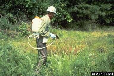 L'agriculteur pulvérise un herbicide, un produit phytotoxique, sur son champ. © USDA Forest ServiceRegion 8 Archive, www.bugwood.org, CC by 3.0