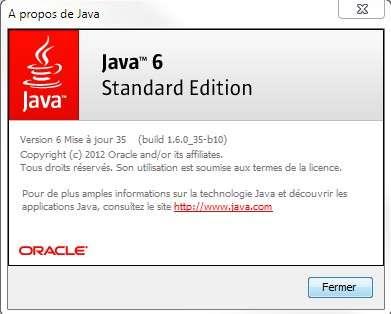 Si elle n'est pas encore exploitée par les pirates, la faille de sécurité qui touche Java Standard Edition (SE) est présente à partir de la version 5 du programme. Les Mac et les PC fonctionnant avec une distribution de type Linux ne sont pas à l'abri de cette vulnérabilité. © Eureka Presse