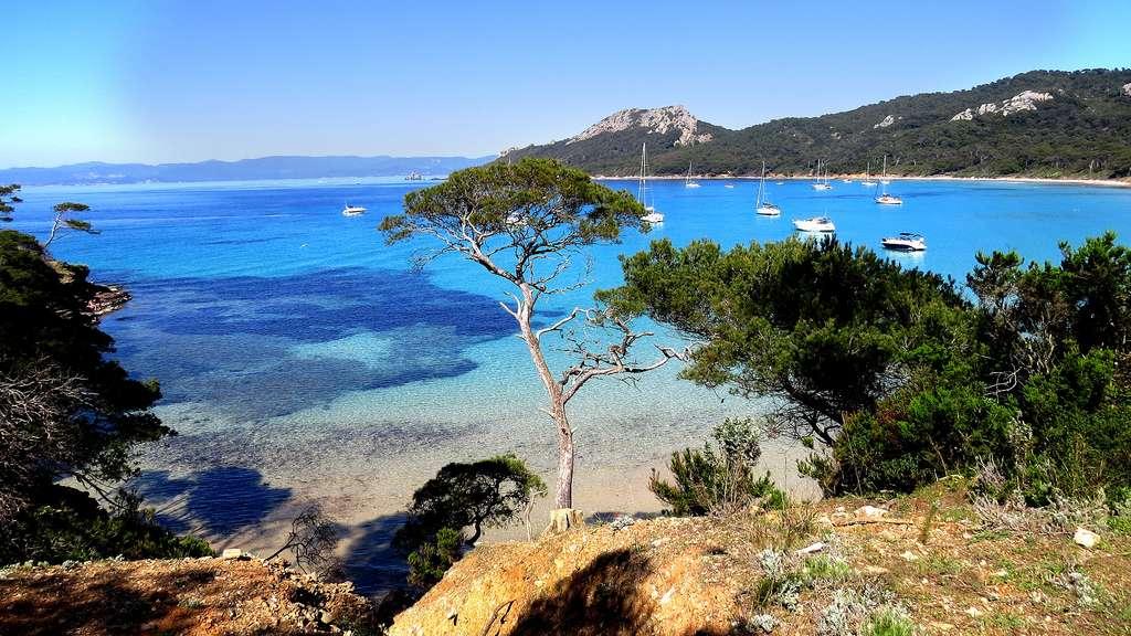 Port-Cros, le premier parc terrestre et marin d'Europe