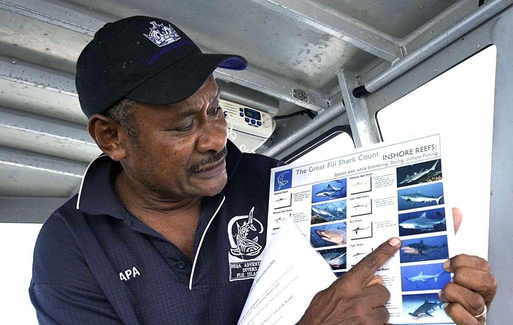 Les requins sont des mal-aimés. Des campagnes de sensibilisation sur ces animaux en grand danger sont indispensables. © Projects Abroad