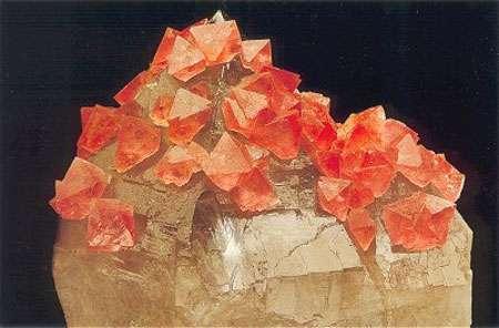 Fluorite rose - Massif du Mont-Blanc, Chamonix, Haute-Savoie - Collection W.Thompson - Reproduction et utilisation interdites © Photo : Jeff Scovil