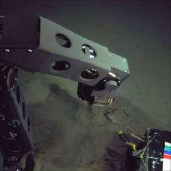 Le bras du Nereus peut collecter des échantillons (cliquer sur l'image pour l'agrandir). On le voit ici à l'œuvre au fond de la fosse des Mariannes. © Woods Hole Oceanographic Institution