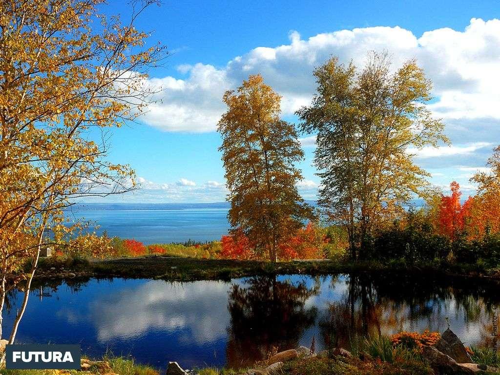 Petit lac près de Charlevoix - Québec