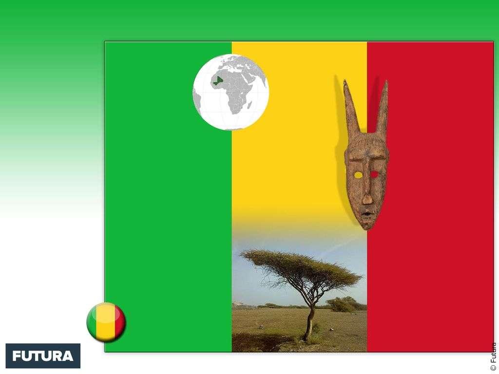 Drapeau : Mali