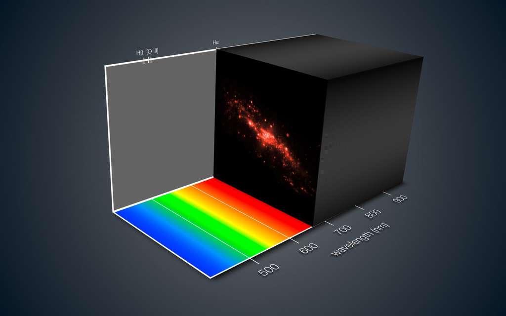 Cette vue montre la façon dont l'instrument Muse offre une description 3D d'une galaxie lointaine. La lumière en provenance de chacune des portions de la galaxie a été séparée dans ses différentes couleurs — fournissant de précieuses indications sur les mouvements dont sont animées les différentes zones de la galaxie. Cette lumière donne aussi des informations relatives à la composition chimique et d'autres propriétés. © Eso, consortium Muse, R. Bacon, L. Calçada