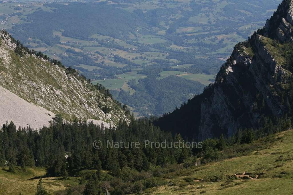 Qui soupçonnerait que, derrière ce superbe paysage d'Isère, se cache une multitude de pièges ? © Jean-François Noblet, DR