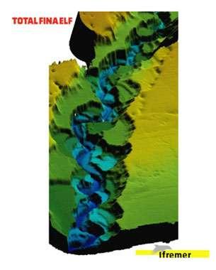 Vue 3D de la morphologie d'une partie du canyon sous-marin du Zaïre © Ifremer Reproduction et utilisation interdites