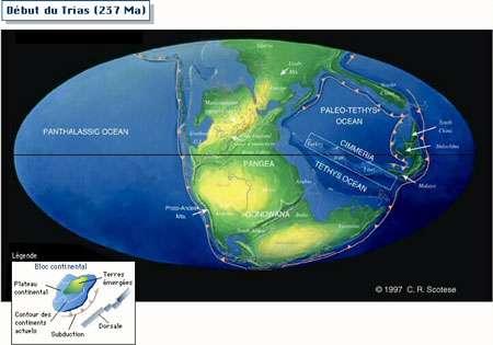Le monde au début du Trias (237 Ma). © Professeur Bourque, université Ulaval, Canada