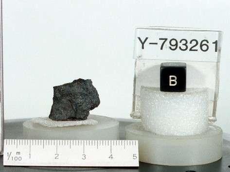 La météorite Yamato-793261 (Y-793261) trouvée en Antarctique. © 2018 Waseda University.