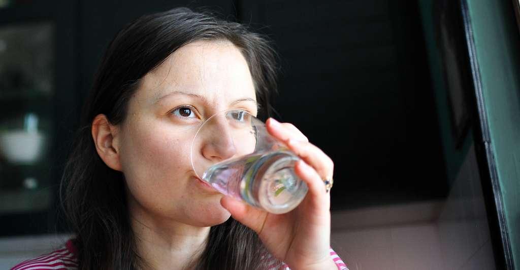 Pour filtrer l'eau du robinet, la solution la plus sûre reste l'osmoseur d'eau mais la filtration sur robinet et les bouteilles au Binchōtan (charbon de bois blanc actif) sont aussi très efficaces. © Nevena Marjanovic, Shutterstock