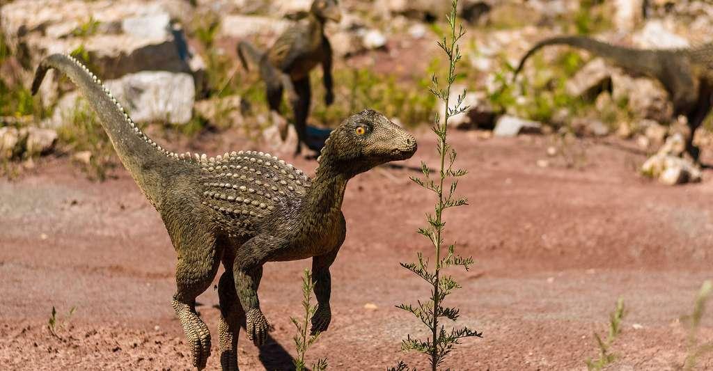 Des sauropodes, dinosaures géants du Crétacé. © DariuszSankowski, DP