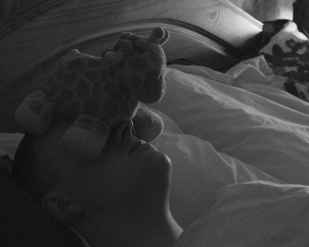 Tous les moyens sont bons pour pouvoir continuer à dormir un peu plus longtemps... © Kelmon, Flickr, cc by nc nd 2.0