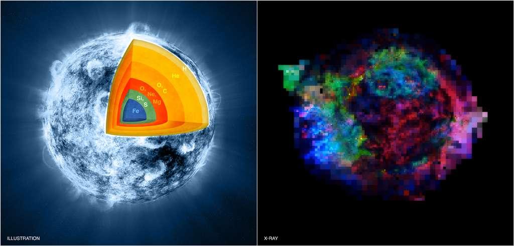 À gauche, un schéma de la composition chimique de l'étoile massive avec l'explosion ayant formé Cassiopée A. Sa structure en oignon montre que les atomes les plus lourds, le fer (Fe) et le silicium (Si), sont au centre de l'étoile, alors que l'hydrogène (H) et l'hélium (He) se trouvent à la surface. Sur la droite, les restes de la supernova à l'origine de Cassiopée A montrent une structure exactement inverse. On le voit grâce aux fausses couleurs associées aux noyaux présents dans les restes de la supernova et qui correspondent aux couleurs du schéma de gauche. © Nasa/CXC/M.Weiss ; X-ray : Nasa/CXC/GSFC/U. Hwang & J. Laming