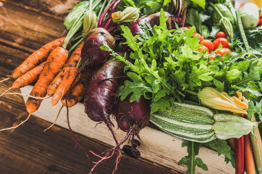 Afin d'identifier de potentiels changements d'habitudes alimentaires au sein des populations canadienne et française, plusieurs auteurs ont pris l'initiative de comparer les données de cohorte comme NutriNet-Santé en France et Nutrition-Québec au Canada. © Alicja neumiler, Adobe Stock
