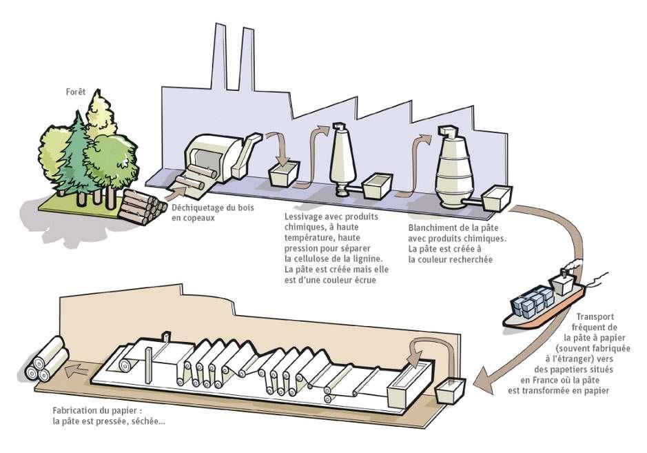 Le cycle de fabrication du papier. © F. Claveau, extrait du livret Fabriquer des livres, quels impacts sur l'environnement ? L'Analyse de cycle de vie d'un livre de Terre vivante