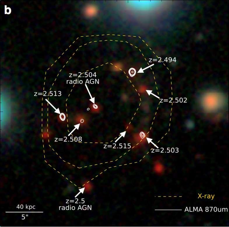 Cette image montre un zoom sur le coeur de l'amas avec ses 17 galaxies en pleine « flambée d'étoiles » identifiées par le rayonnement de leur matière interstellaire (via la détection des molécules et de leur redshift grâce à IRAM-NOEMA, et des poussières grâce à ALMA). © CEA