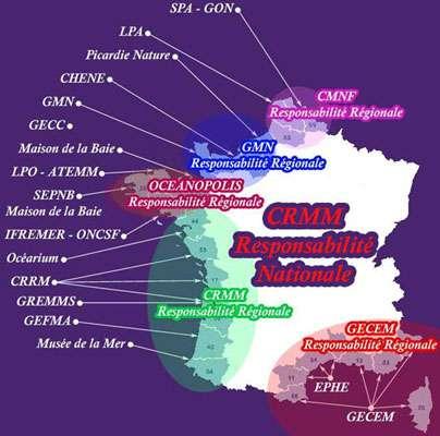 Carte du réseau échouage. © Réseau national échouage